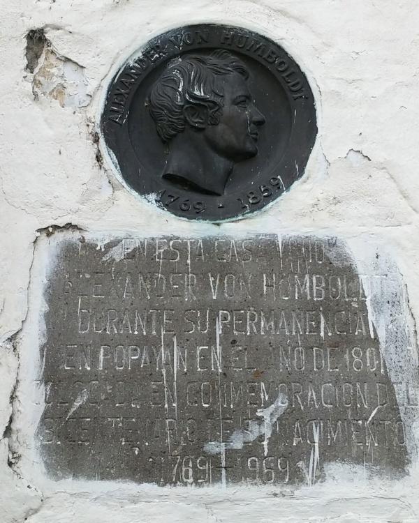 alexander-von-h